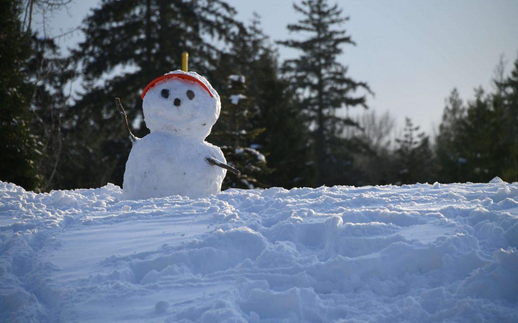 snowman memory | Spectrum health